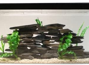 30 galllon Acrylic aquarium_
